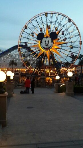 Rueda de Chicago / Mickey's Fun Wheel