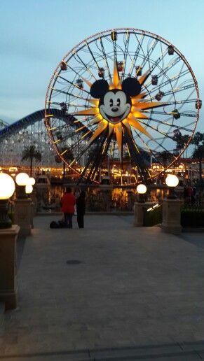 Rueda de Chicago / Mickey's Fun Wheel