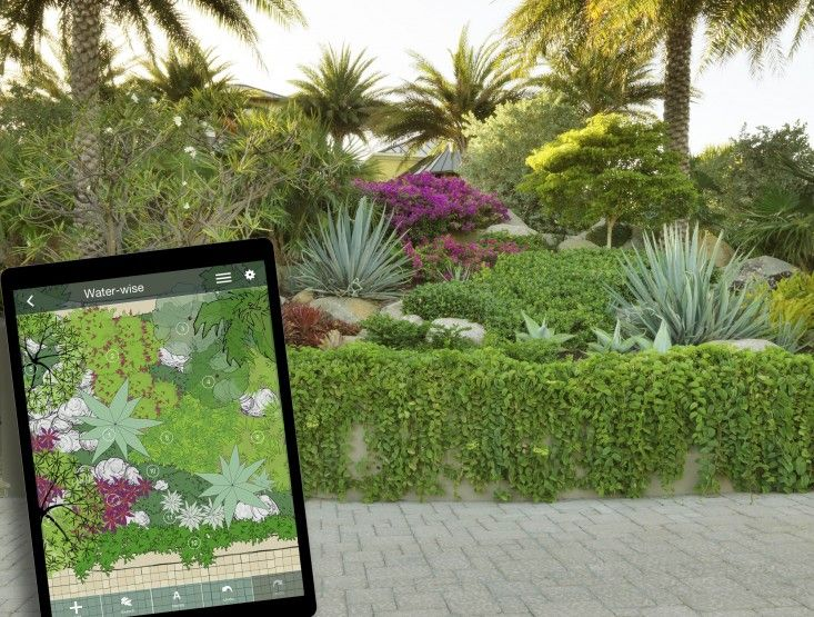 17 Best Images About Landscapes On Pinterest | Gardens, Perennial