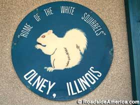 Unofficial Olney, IL Town Seal.  Home of the White Squirrels!