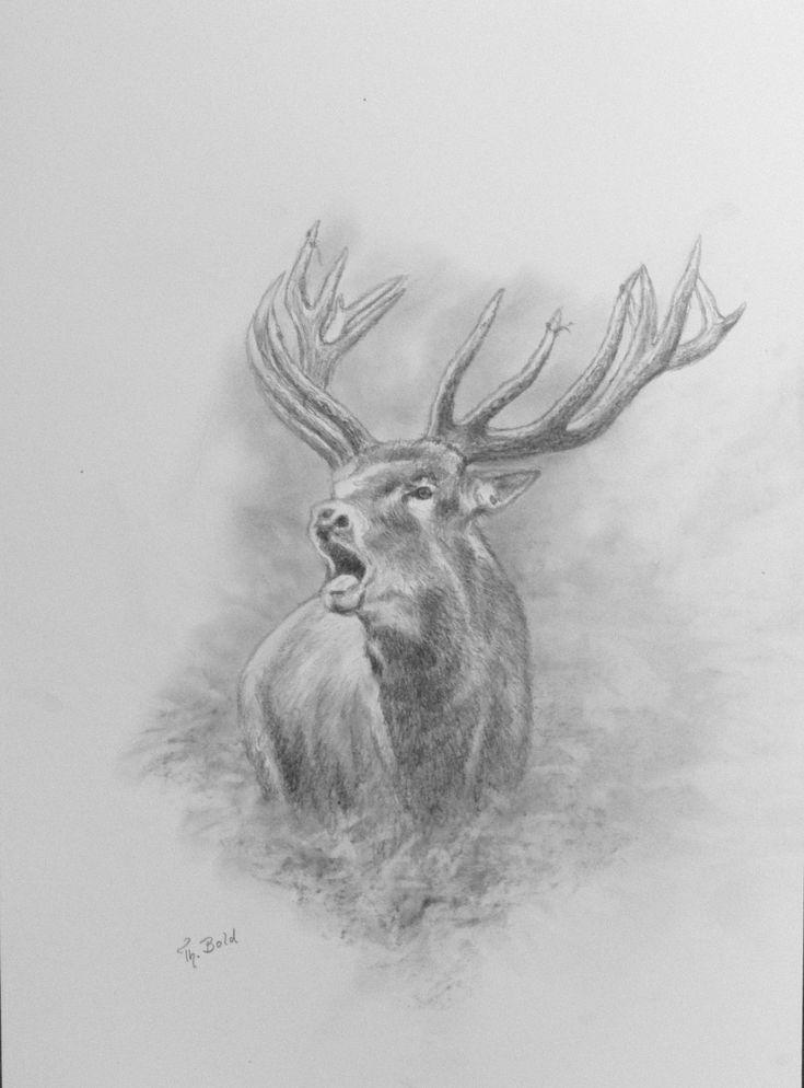 Geweihträger – Jagdmaler Thomas Bold