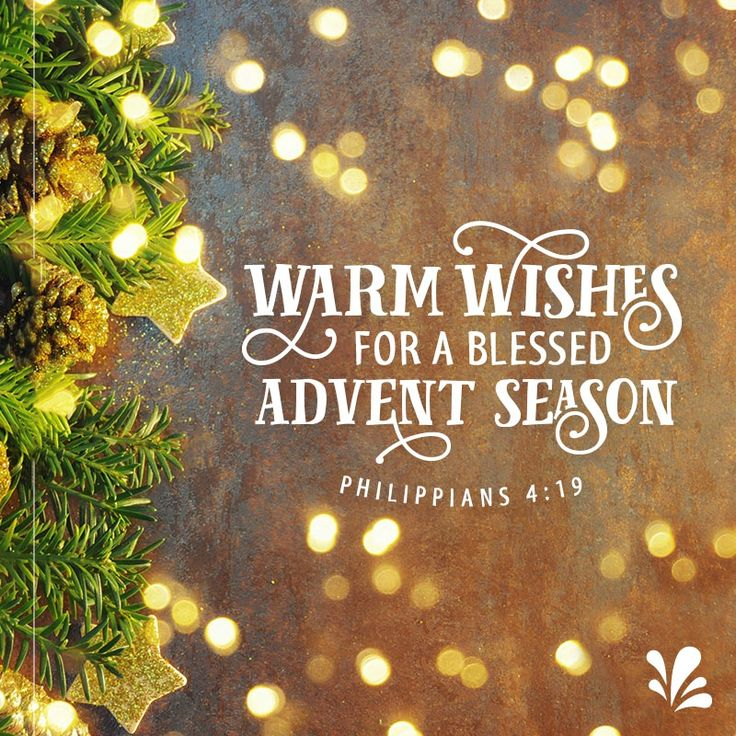 9 best advent season images on pinterest advent season christmas share a friendship ecard today dayspring offers free ecards featuring meaningful messages and inspiring scriptures m4hsunfo
