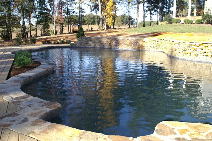 freeform pools | Swimming Pool Contractors, Inground Swimming Pool, Pool Contractor ... Just needs to be long enough to do laps