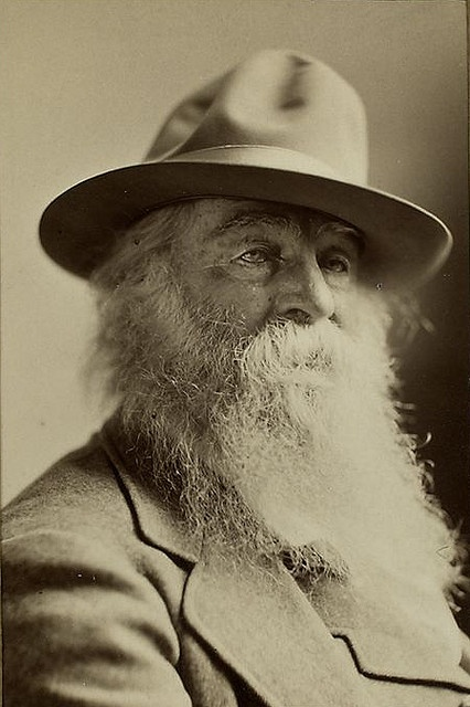 "Walt Whitman, ""Song of Myself,"" 1855 				i. Breaks from the artificiality of traditional poetic 				   diction and meter 				ii. Themes of freedom, democracy, and freedom of self (romanticism)"