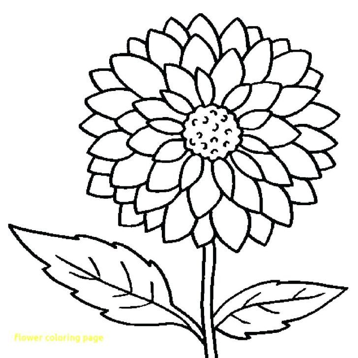 Spring Flowers Colouring Pages To Print Spring Day Cartoon Flower Coloring Pages Spring Coloring Pages Book Page Flowers
