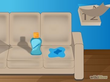 How to Remove the Smell of Cat or Dog Urine from ...