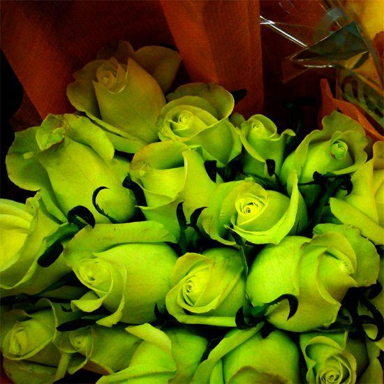 58 best enviar flores ramos de flores rosas images on pinterest bouquet of flowers - Ramos de flores hermosas ...