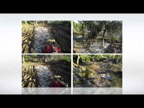 ζεόλιθος σε λαχανόκηπο, οπωροφόρα δέντρα και ελαιόδεντρα