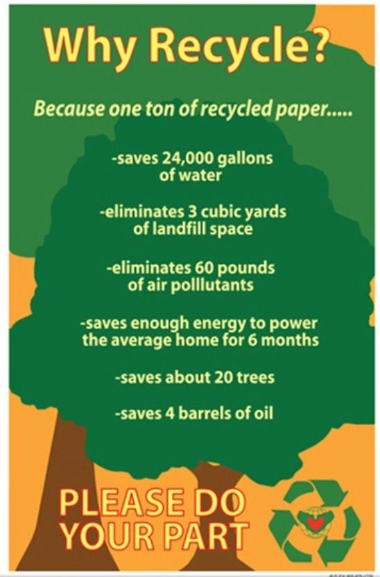 facts about recycling paper Fun facts every day us in 2014, 96 percent of americans had access to community curbside or drop-off paper recycling programs.