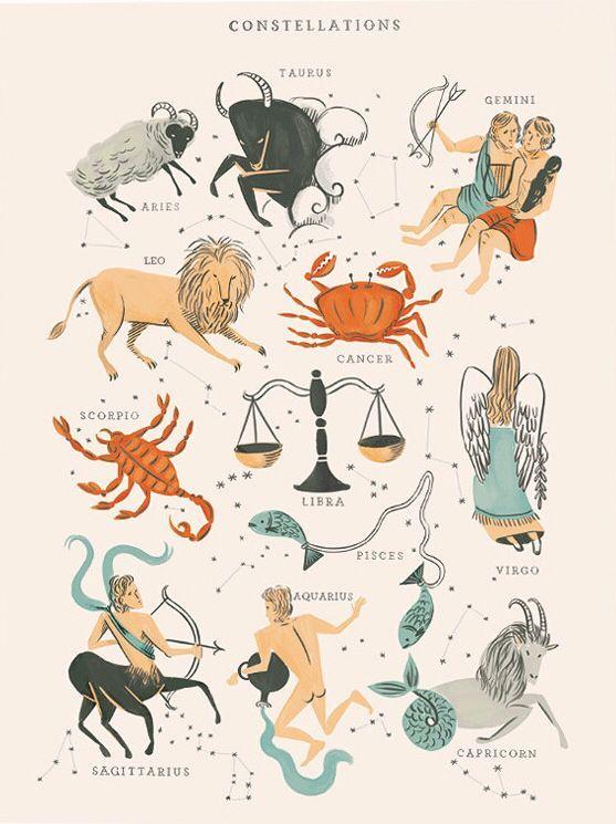 Zodiac constellations #design #illustration