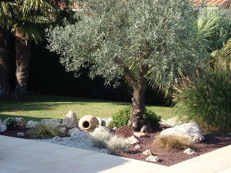 décoration jardin avec olivier