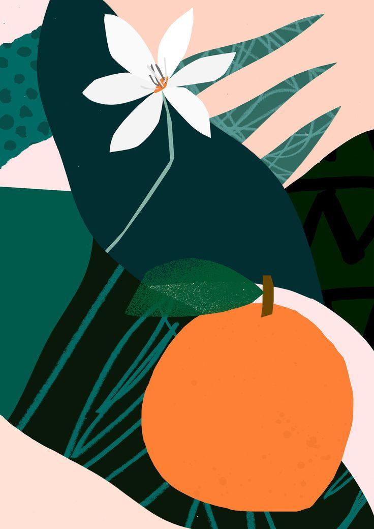'Orange' - Tom Abbiss Smith. #abstract #contemporary #illustration #collage #design #orange #flower #modern
