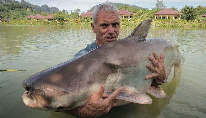 Jeremy Wade sosteniendo un pez gato gigante del Mekong en ...
