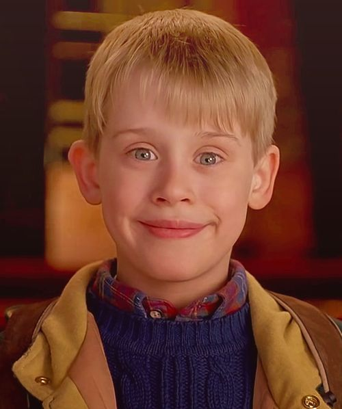 Home Alone Actor How Much Do Actors Make