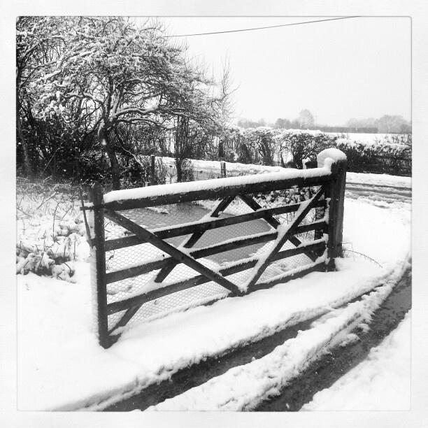 Mine. Worcestershire.