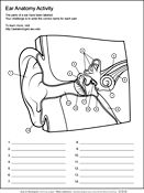 Ask A Biologist, Coloring Page, Human Ear Anatomy Worksheet