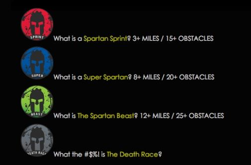 Image result for spartan race different levels