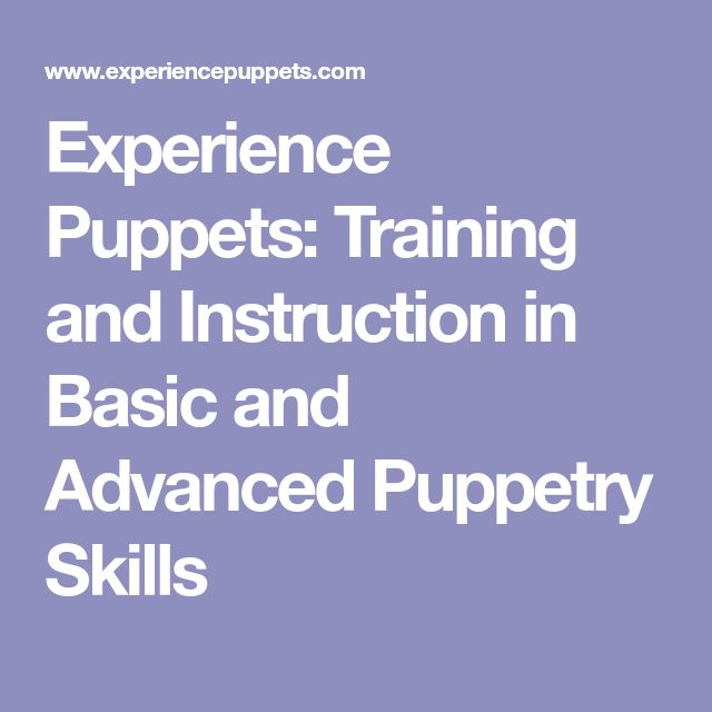 Experience Puppets: Training and Instruction in Basic and Advanced Puppetry Skills