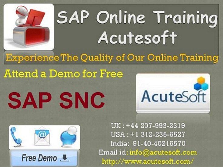 sap scm sample resume