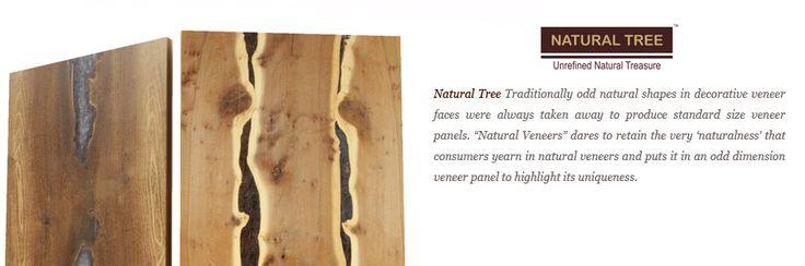 Natural Veneers : : Natural Tree Veneers