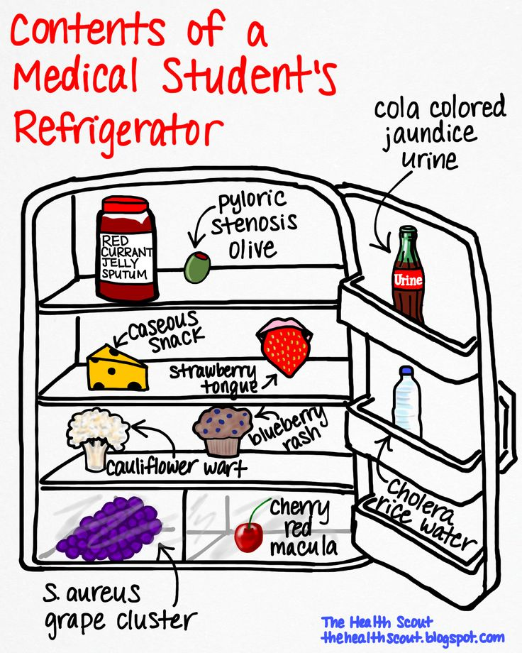 the important things for a medical student Why is important to start early if you want to become a doctor first of all, you will need to attend a college that will prepare you for medical school.