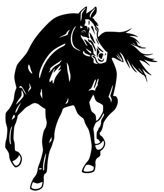 Horse- Arabian Horse wall decal, Horse sticker 28 inches x 29 inches.