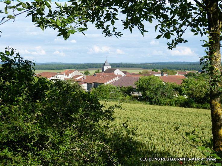 Colombey-les-Deux-Églises(52)-Le village vu du Mémorial Charles de Gaulle!