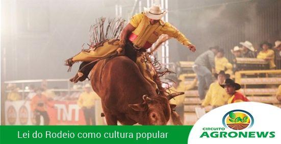 """RODEIO É APROVADO EM LEI FEDERAL COMO """"ATIVIDADE DA CULTURA POPULAR"""""""