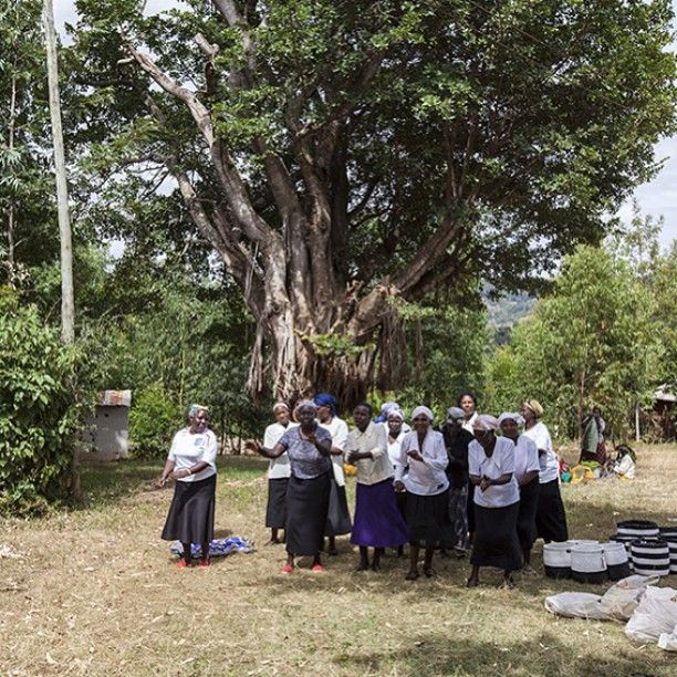 Our ladies in Machakos are not only master basket weavers. These mamas also know how to groove - it´s time for a dance break in the shade of a huge tree. Have a nice weekend everyone and let´s dance!