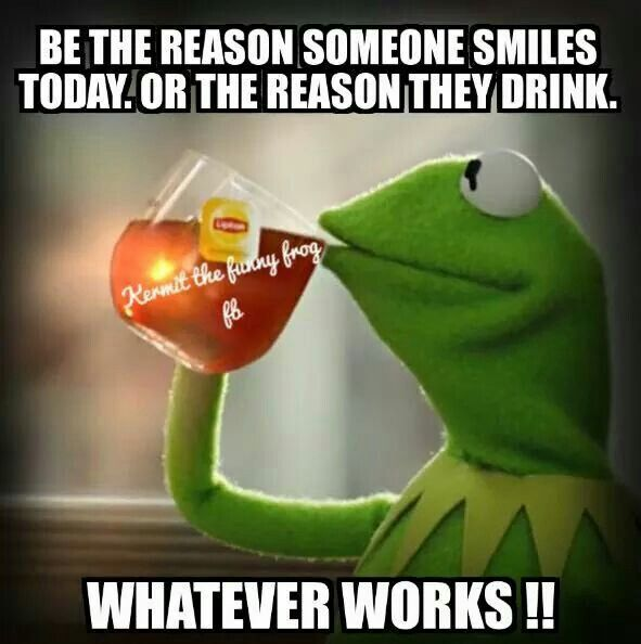 1000 images about Funny Stuff on Pinterest Kermit