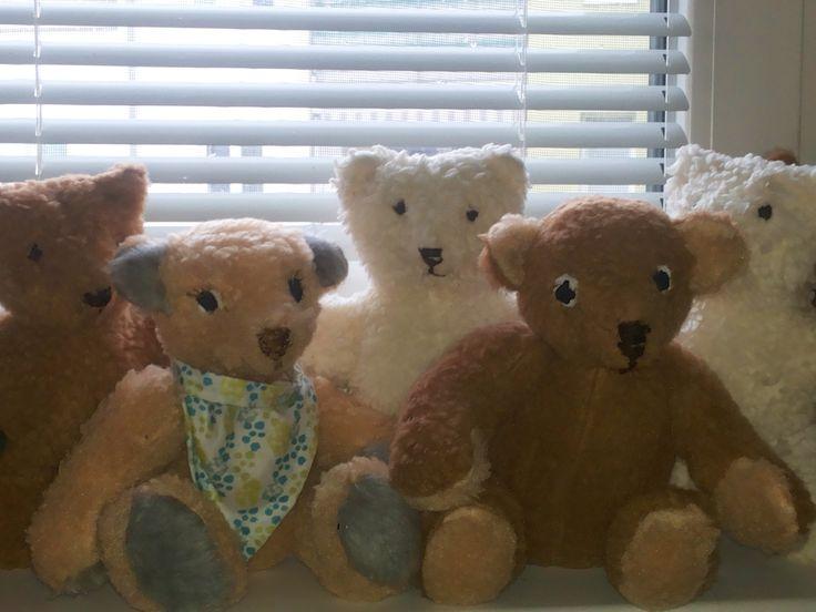 Bärenfamily