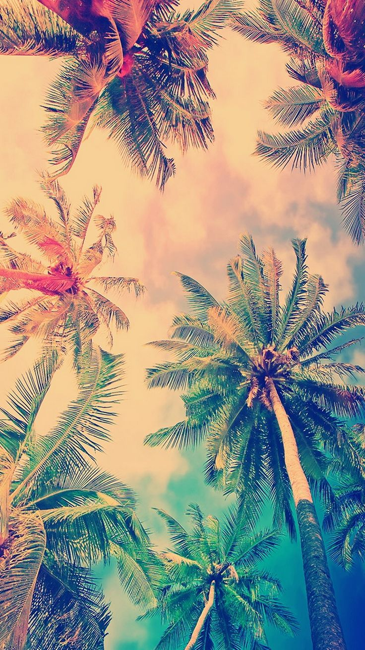 ↑↑TAP AND GET THE FREE APP! Nature Palms Trees Colorful Vintage Sky Summer HD iPhone 5 Wallpaper