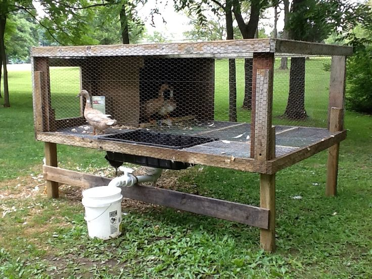 a new improved duck pen for our ducks the farm pinterest