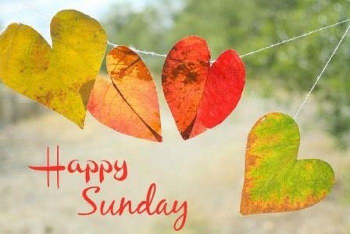 Happy Sunday heart leaves