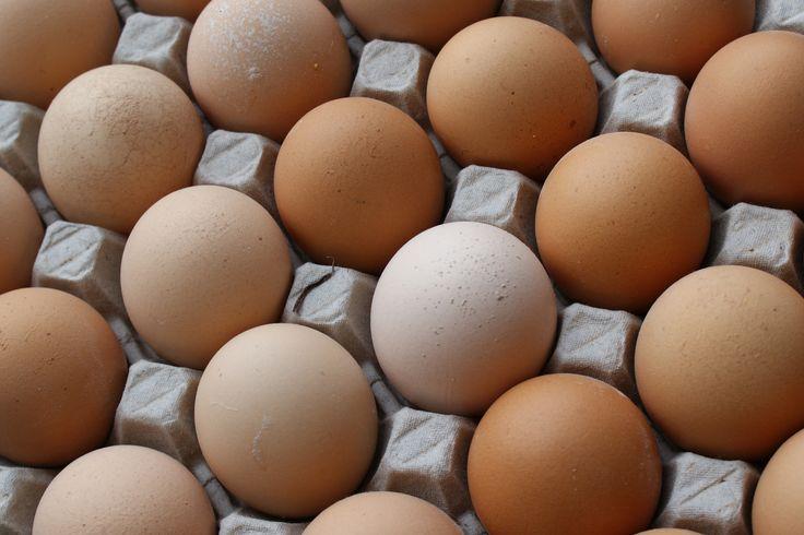 Egg-cellent Life Hacks For The Kitchen - #Blog #diet #food  paleoaholic.com