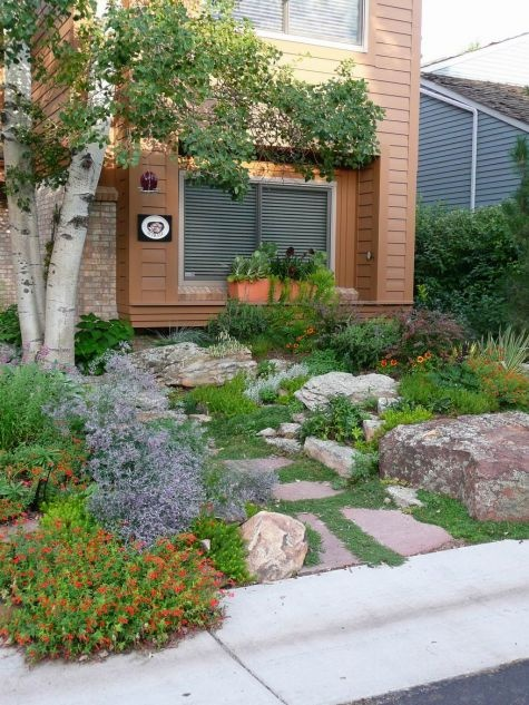 83 best instead of a lawn images on pinterest for Zero landscape ideas