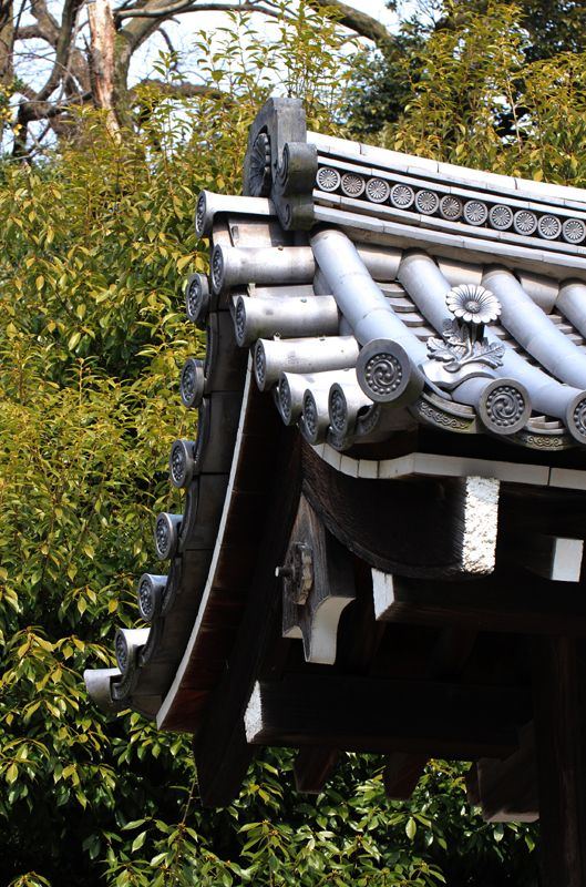 Kyoto, Japan 京都御苑  (Photo : Gallery I) https://www.facebook.com/Kyoto.GalleryI