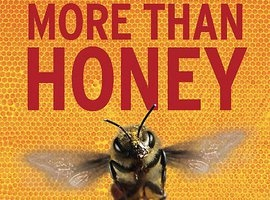 More than Honey - Viden om ...bier, dokumenter om bier over hele verden og bl.a mishandel af industrie bier. Man for bare lyst at starte op med biavl i sin villahave efter at have sæt den