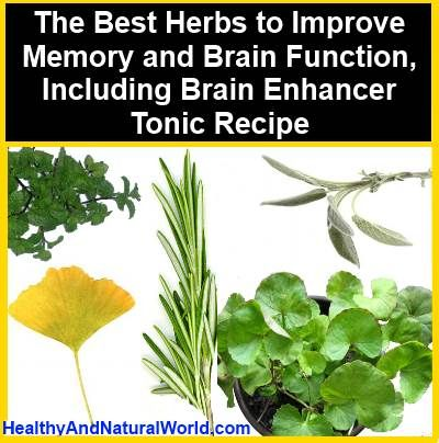 The Best Herbs to Improve Memory and Brain Function, Including Brain Enhancer Tonic Recipe