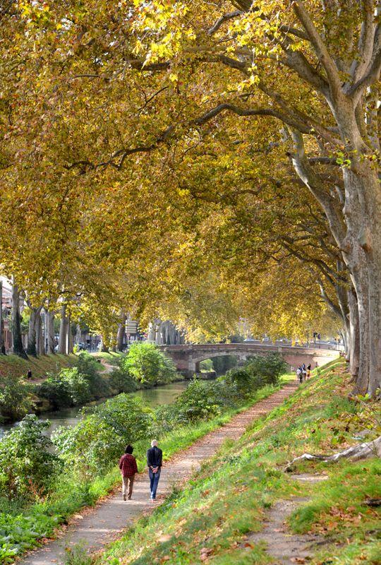 Promenade automnale le long du canal © CRT Midi-Pyrénées - P. Thébault #toulouse #visiteztoulouse