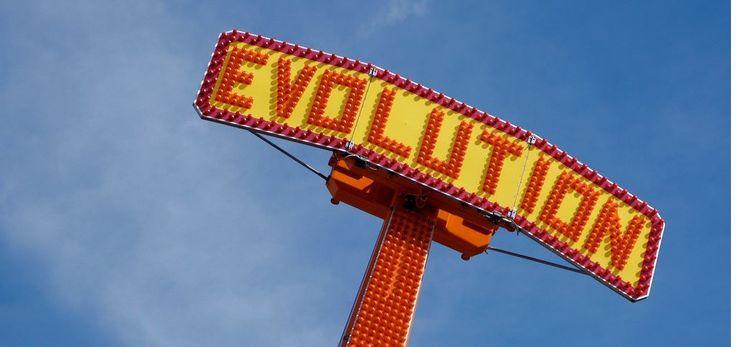 Ist der Kaiserschnitt das Ende der Evolution?