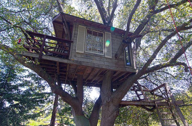 Burlingame Treehouse   Tiny House Swoon
