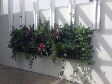 Vertical Garden - Courtyard - Spring Hill