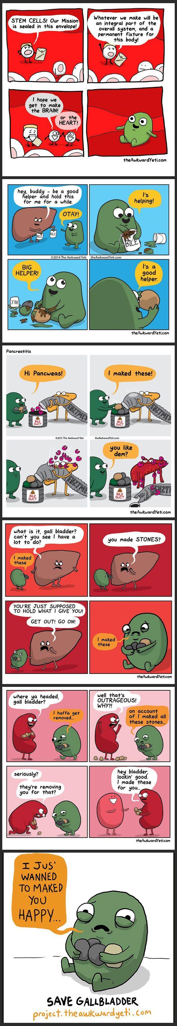 Meet Gallbladder...my favorite non-essential organ.