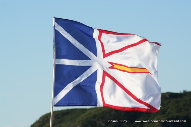 Newfoundland flag blowing in the wind.  We love thee, smiling land.