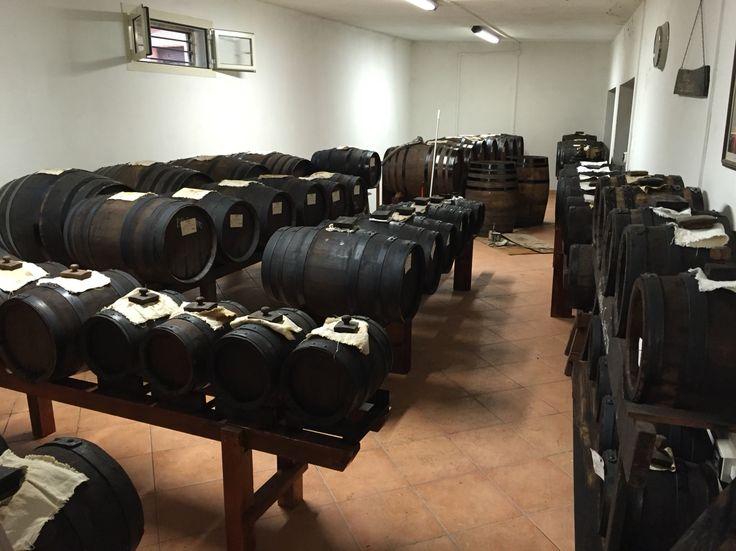 TRADITONAL Balsamic Vinegar barrels