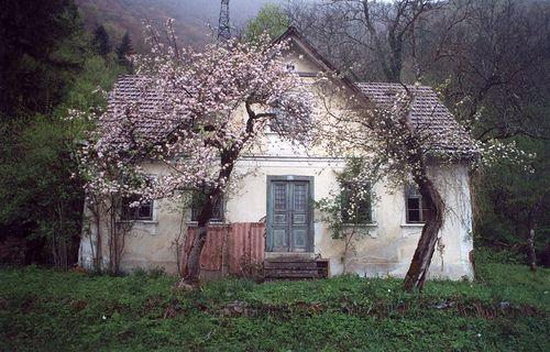 95 besten kleinsth user bilder auf pinterest kleine for Piani di casa cottage storybook