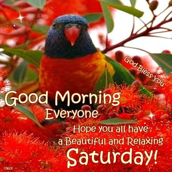 Good Morning Everyone God Bless You All : Best images about saturday sayings on pinterest i