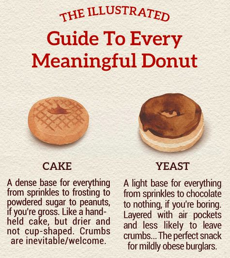 Guide to Every Meaningful Type of Donut Illustrated