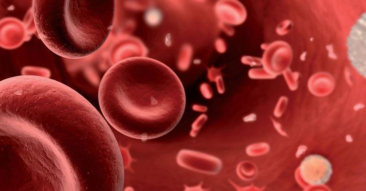 Применяйте наши советы и БУДЕТЕ ЗДОРОВЫ! Эхинацею не напрасно называют «чистильщиком крови». А чистая кровь — здоровый организм. Это растение активно очищает лимфатическую систему, кровь, почки и печень. Эхинацея — доктор, который лечит не последствия болезни, а ее первопричины, и что немаловажно, не обладает побочными эффектами. 1 ст.л. сухой эхинацеи (лист, стебель, цвет) залить 0,5